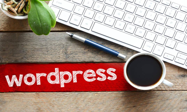 WordPress Website in 24 Hours