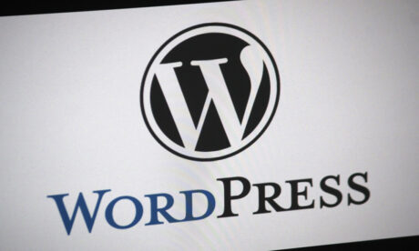 WordPress For Beginners Free domain name and hosting