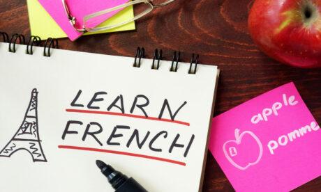 French Language Course Level 1